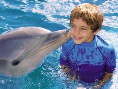 Ocean World Dolphin Encounter Puerto Plata