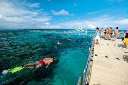 Reef Explorer Punta Cana
